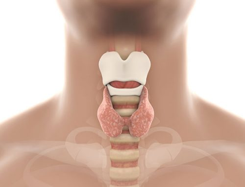Neuropatía laríngea: una de las causas de la tos crónica