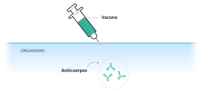 vacuna covid - vacunas contra el covid autorizadas